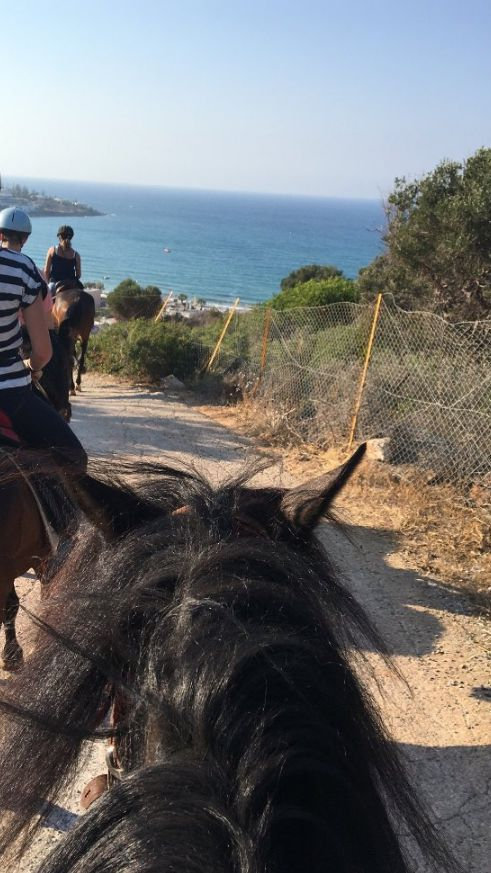 STALIS HORSE RIDING 33