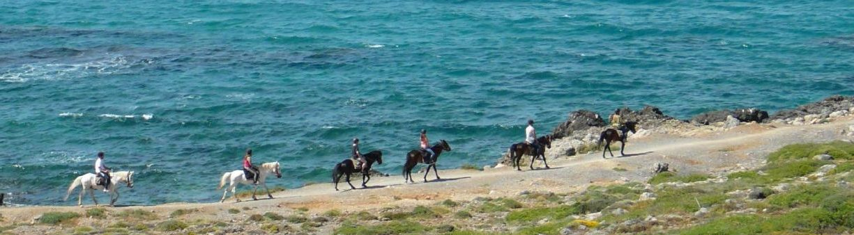 STALIS HORSE RIDING 36