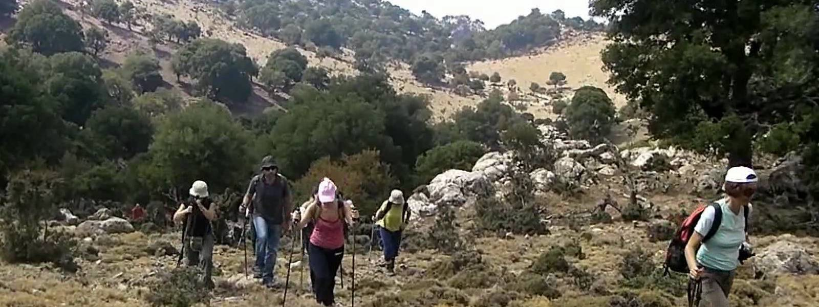 walking4 1600x600 - WALKING-TOURS-CRETE