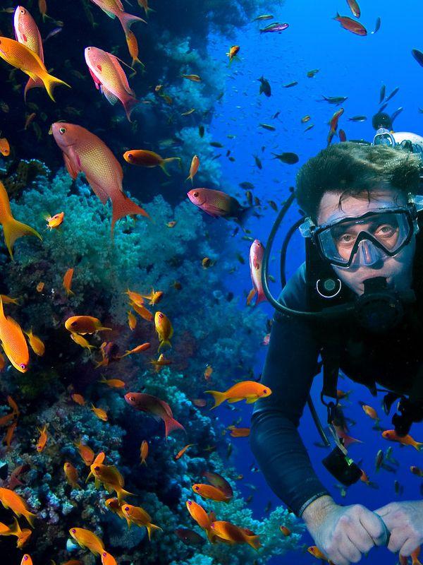 Scuba diving in Creta