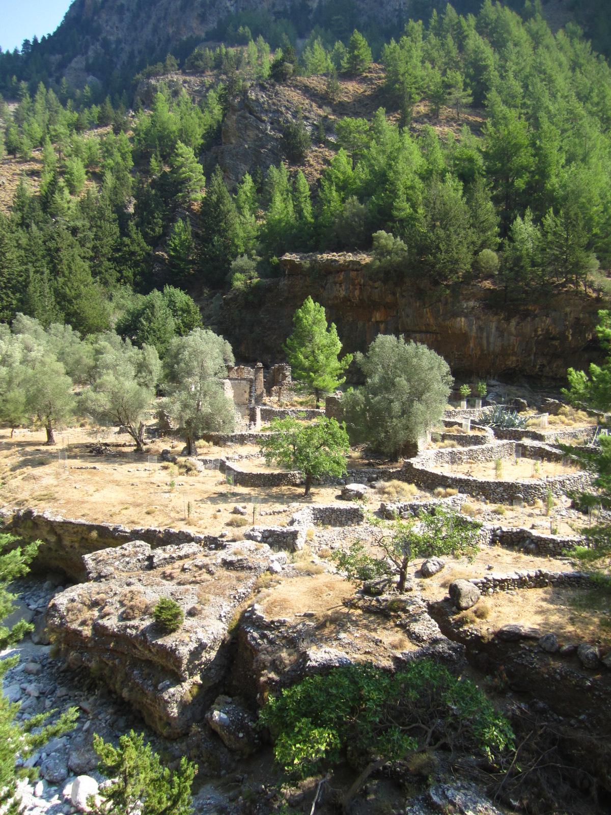 Deserted Village of Samaria 3 - SAMARIA