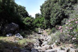 aposelemis-gorge-hersonissos