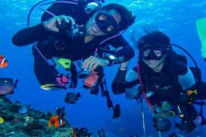 diver-300X200.jpg